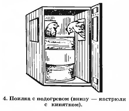 4. Поилка с подогревом (внизу — кастрюля с кипятком)