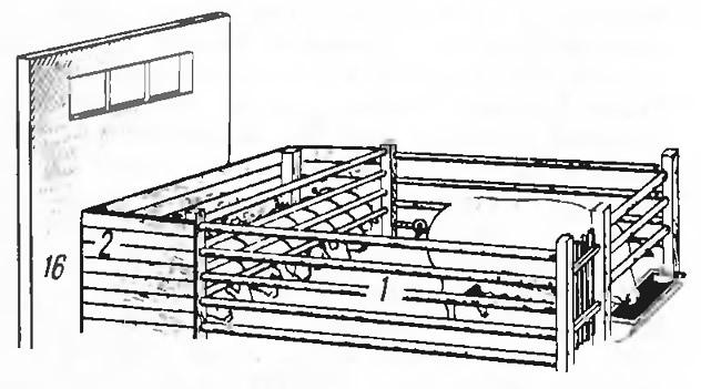 5. Станок для свиноматки с поросятами