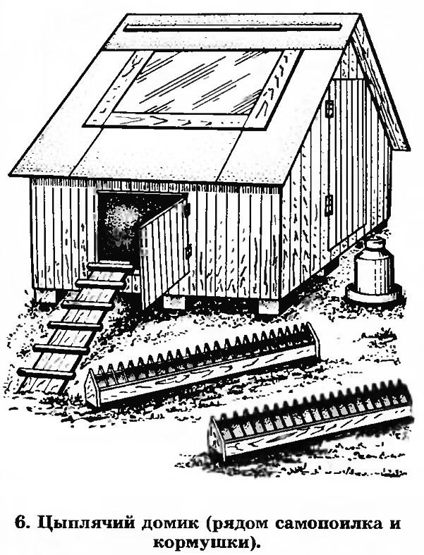 6. Цыплячий домик (рядом самопоилка и кормушки)