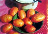 Картофель Вильня