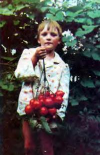 Кисть помидоров