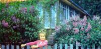 Палисадник — лицо вашего садового участка