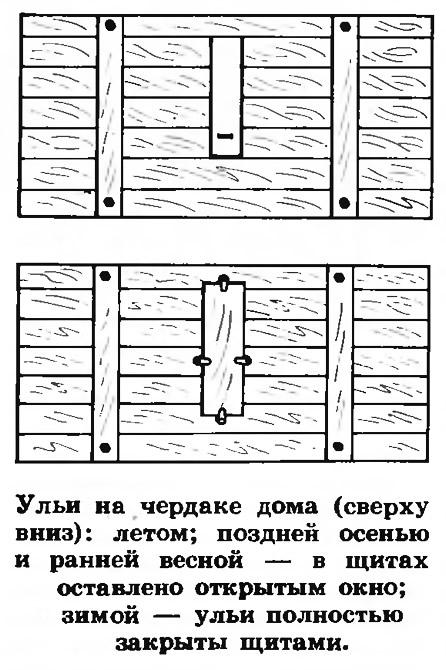 Открытое и закрытое окно в щитах