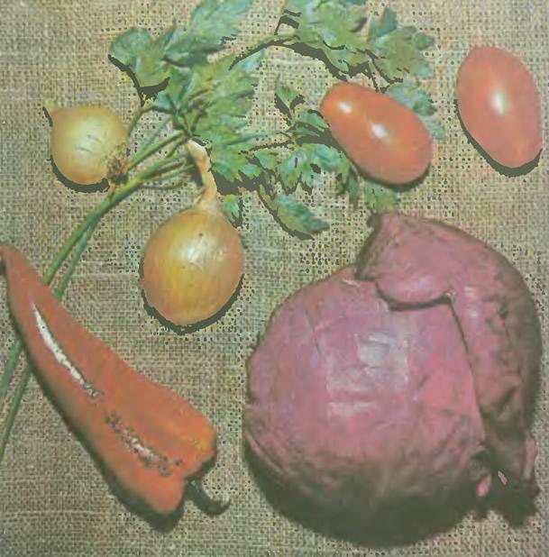 Овощи - дары осени