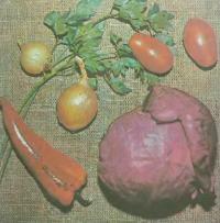 Овощное планирование огорода