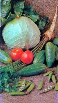 Овощи, выращенные в парнике