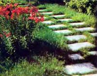 Плиты уложенные на расстоянии шага