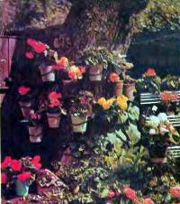 Подвешенные горшки с цветами