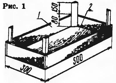 Рис. 1. Черенки в пикировочных ящиках