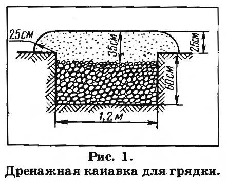 Рис. 1. Дренажная канавка для грядки