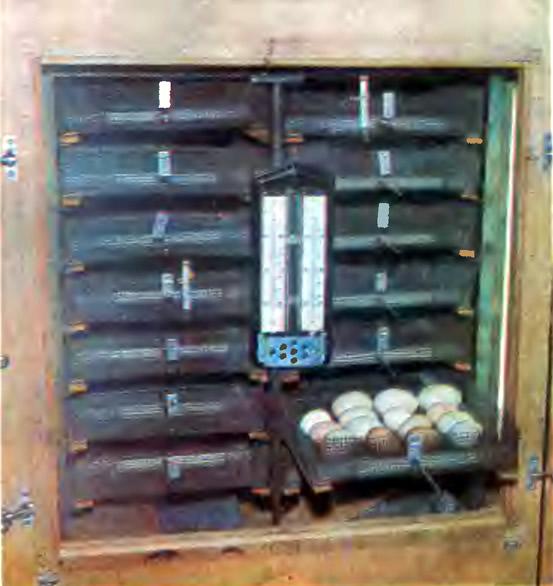 Рис. 1. Инкубатор со стороны загрузки