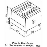 Рис. 3. Инкубатор Е. Бахметенко — общий вид