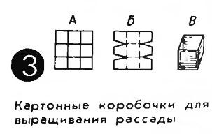 Рис. 3. Картонные коробочки для выращивания рассады