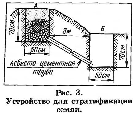 Рис. 3. Устройство для стратификации семян