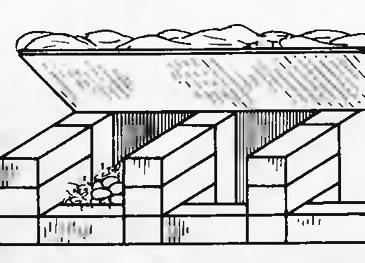 Рис. 4. Капитальные гнезда для кур