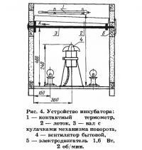 Рис. 4. Устройство инкубатора