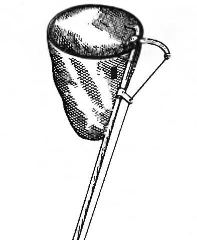Рис. 5. Плодосъемник из мешочка из капроновой сетки