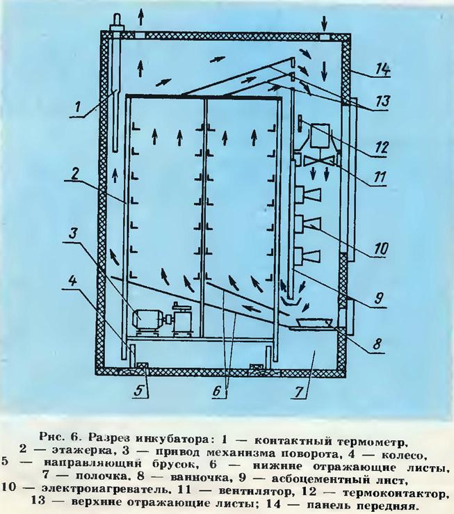 Рис. 6. Разрез инкубатора