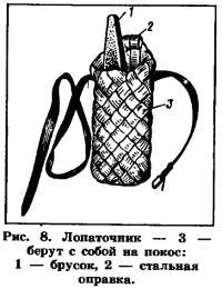 Рис. 8. Лопаточник