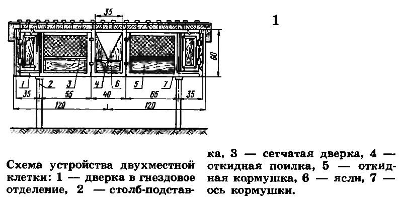Схема устройства двухместной клетки
