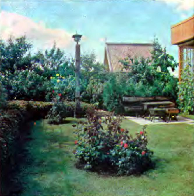 Ухоженный сад с живой изгородью