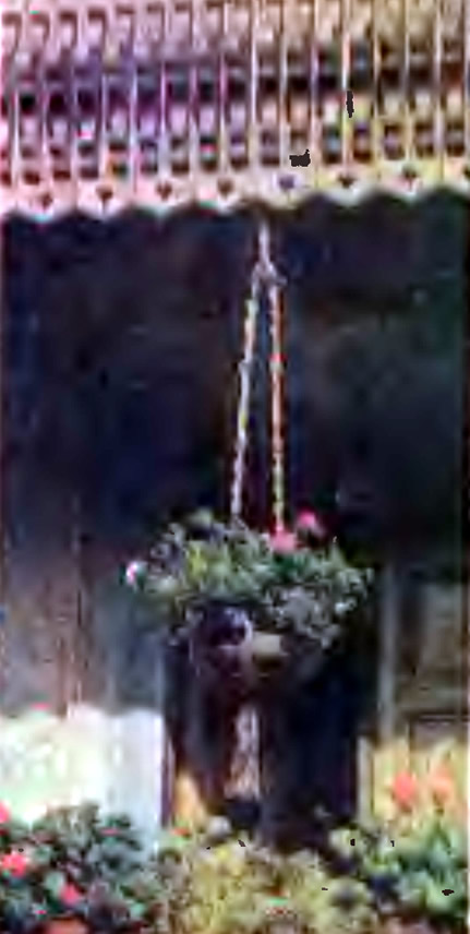 Висящий цветник